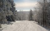 Building the World's Best Snowmobile Destination